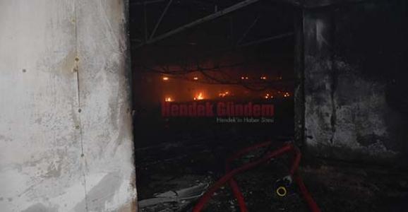 Hendek'te Tavuk Kümesinde Yangın