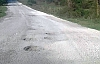 Kargalı Orman Köy Arası Yol Asfaltlanmasını İstedi
