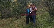 ORMANDAKİ FINDIK TARİFE BEDELİ İLE TOPLANACAK