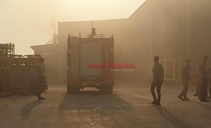 Hendek'te Korkutan Yangın