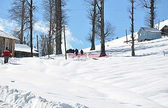 Dikmen'e Kış Turizmi Projesi
