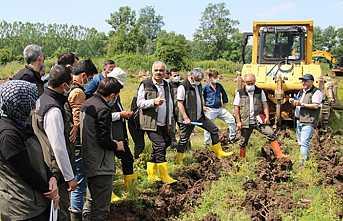 Ağaçlandırma ve Fidan Üretim Eğitimi Hendek'te Yapıldı
