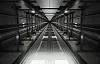 Asansör Boşluğuna Düşen İşçi Hayatını Kaybetti