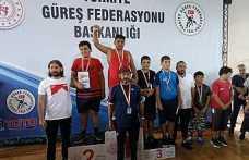 Hendek Belediyesi Güreş Takımından Büyük Başarı